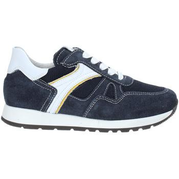 Schoenen Kinderen Lage sneakers Nero Giardini P933590M Blauw