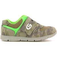 Schoenen Kinderen Lage sneakers Grunland PP0157 Groen