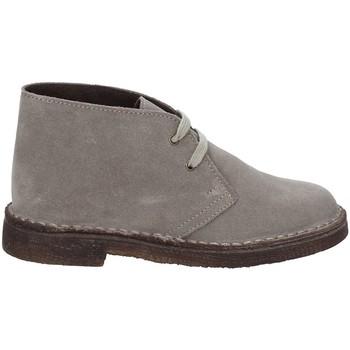 Schoenen Kinderen Laarzen Rogers 1100B Grijs