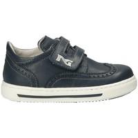 Schoenen Kinderen Lage sneakers Nero Giardini P823110M Blauw