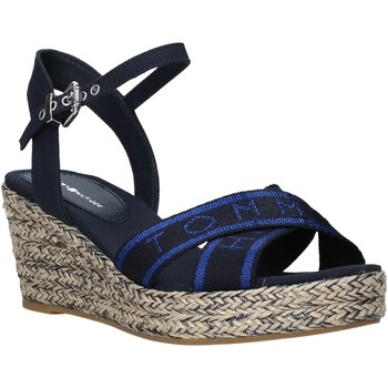 Schoenen Dames Sandalen / Open schoenen Tommy Hilfiger FW0FW04751 Blauw