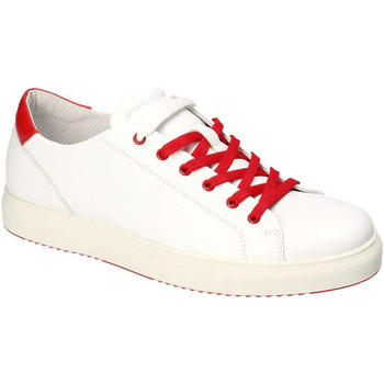 Schoenen Heren Lage sneakers IgI&CO 3132700 Wit