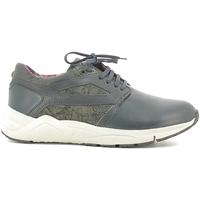 Schoenen Heren Lage sneakers Alberto Guardiani SU73452D Blauw