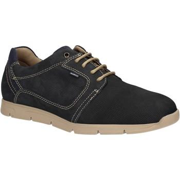 Schoenen Heren Lage sneakers Baerchi 5080 Blauw