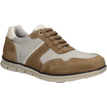 Schoenen Heren Lage sneakers Keys 3071 Bruin