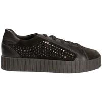 Schoenen Dames Lage sneakers Geox D6434B 02285 Zwart