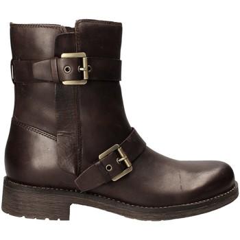 Schoenen Dames Enkellaarzen Geox D6451E 000LC Bruin