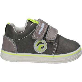 Schoenen Kinderen Lage sneakers Primigi 7538 Grijs