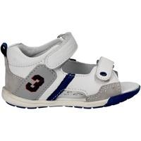 Schoenen Kinderen Sandalen / Open schoenen Chicco 01057445 Wit