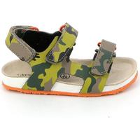 Schoenen Kinderen Sandalen / Open schoenen Grunland SB0832 Groen