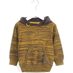 Textiel Kinderen Sweaters / Sweatshirts Losan 625 5005AC Geel