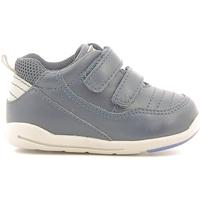 Schoenen Kinderen Lage sneakers Chicco 01056500000000 Blauw