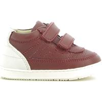 Schoenen Kinderen Laarzen Chicco 01056485000000 Rood