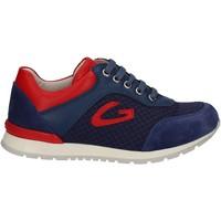 Schoenen Kinderen Lage sneakers Alberto Guardiani GK23301 Blauw