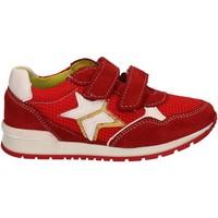 Schoenen Kinderen Lage sneakers Melania ME2092D7E.F Rood