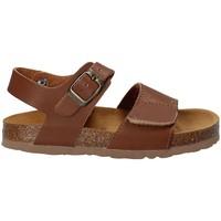 Schoenen Kinderen Sandalen / Open schoenen Bamboo BAM-218 Bruin