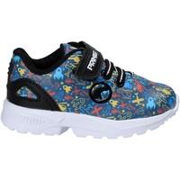 Schoenen Kinderen Lage sneakers Primigi 8269 Blauw