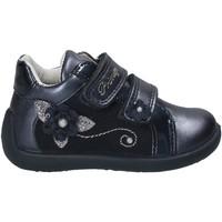 Schoenen Kinderen Lage sneakers Primigi 8519 Blauw