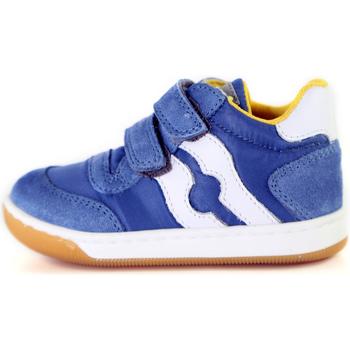 Schoenen Kinderen Lage sneakers Falcotto 2014156 01 Blauw