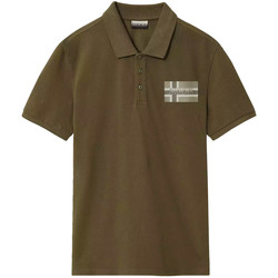 Textiel Heren Polo's korte mouwen Napapijri NP0A4E2K Groen