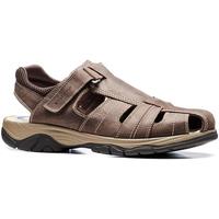 Schoenen Heren Sandalen / Open schoenen Stonefly 108693 Bruin
