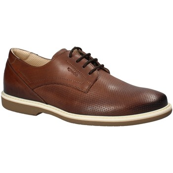 Schoenen Heren Derby IgI&CO 1107622 Bruin