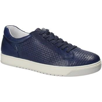 Schoenen Heren Lage sneakers IgI&CO 1125 Blauw