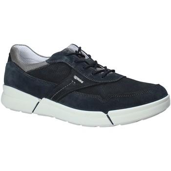 Schoenen Heren Lage sneakers IgI&CO 1126 Blauw