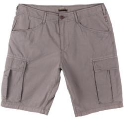 Textiel Heren Korte broeken / Bermuda's Napapijri N0YHF6 Grijs