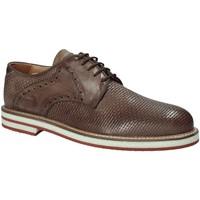 Schoenen Heren Derby Exton 672 Bruin