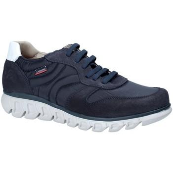 Schoenen Heren Lage sneakers CallagHan 12903 Blauw