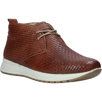 Schoenen Heren Hoge sneakers IgI&CO 1120 Bruin