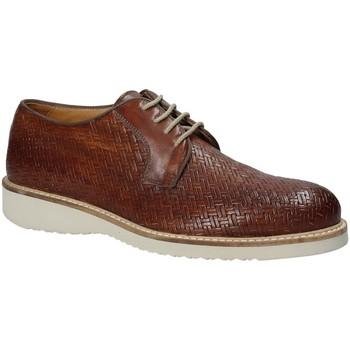 Schoenen Heren Derby Exton 886 Bruin