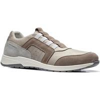 Schoenen Heren Lage sneakers Stonefly 110791 Bruin