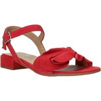 Schoenen Dames Sandalen / Open schoenen IgI&CO 5188433 Rood