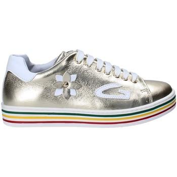 Schoenen Meisjes Lage sneakers Guardiani GK25300G Geel