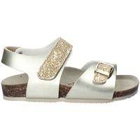Schoenen Meisjes Sandalen / Open schoenen Gold Star 8847Q Geel