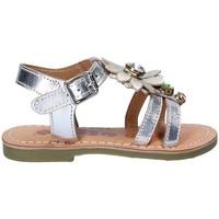 Schoenen Meisjes Sandalen / Open schoenen Asso 55002 Grijs
