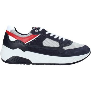 Schoenen Heren Lage sneakers IgI&CO 5131911 Blauw