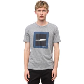 Textiel Heren T-shirts korte mouwen Calvin Klein Jeans K10K102679 Grijs