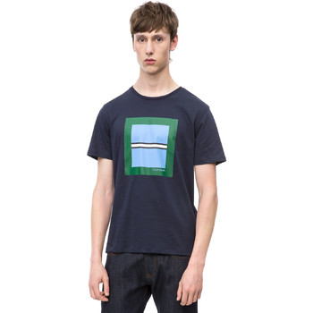 Textiel Heren T-shirts korte mouwen Calvin Klein Jeans K10K102679 Blauw