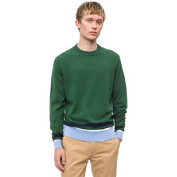 Textiel Heren Truien Calvin Klein Jeans K10K102728 Groen