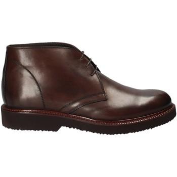 Schoenen Heren Laarzen Rogers 384_2 Bruin