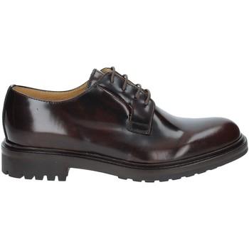 Schoenen Heren Derby Rogers 122A Bruin
