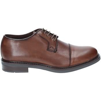 Schoenen Heren Derby Rogers 2040 Bruin