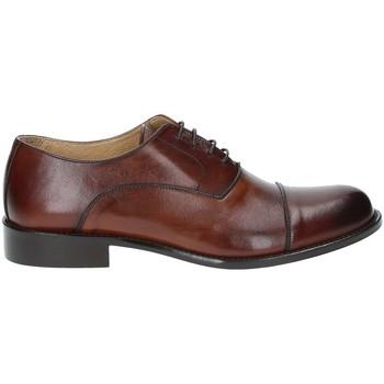 Schoenen Heren Klassiek Exton 6014 Bruin