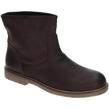Schoenen Dames Enkellaarzen Grace Shoes 1839 Bruin