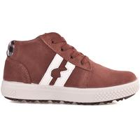 Schoenen Kinderen Hoge sneakers Primigi 2392522 Bruin