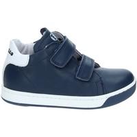 Schoenen Kinderen Lage sneakers Falcotto 2012363-01-9104 Blauw