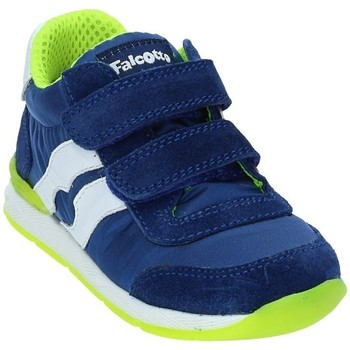 Schoenen Kinderen Lage sneakers Falcotto 2012380-01-9105 Blauw